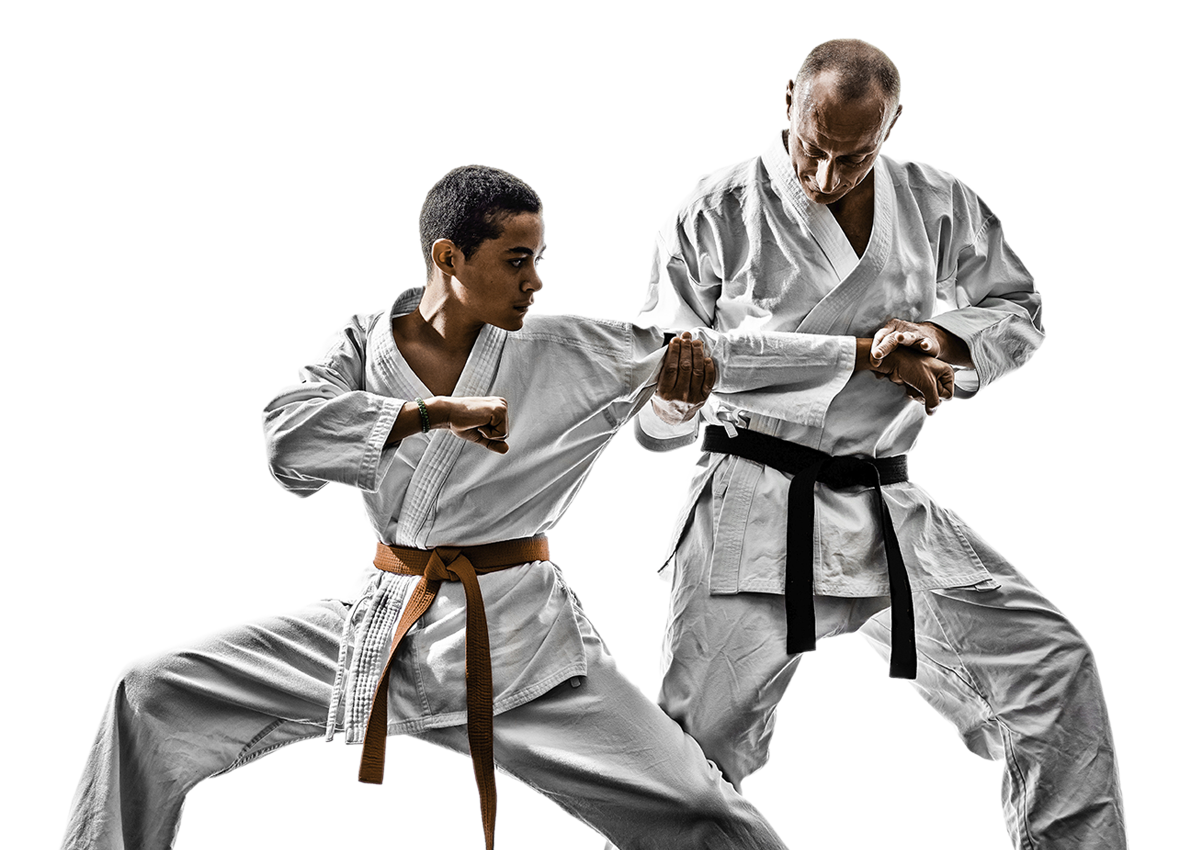 Martial Arts Classes Spring City Education Training Services